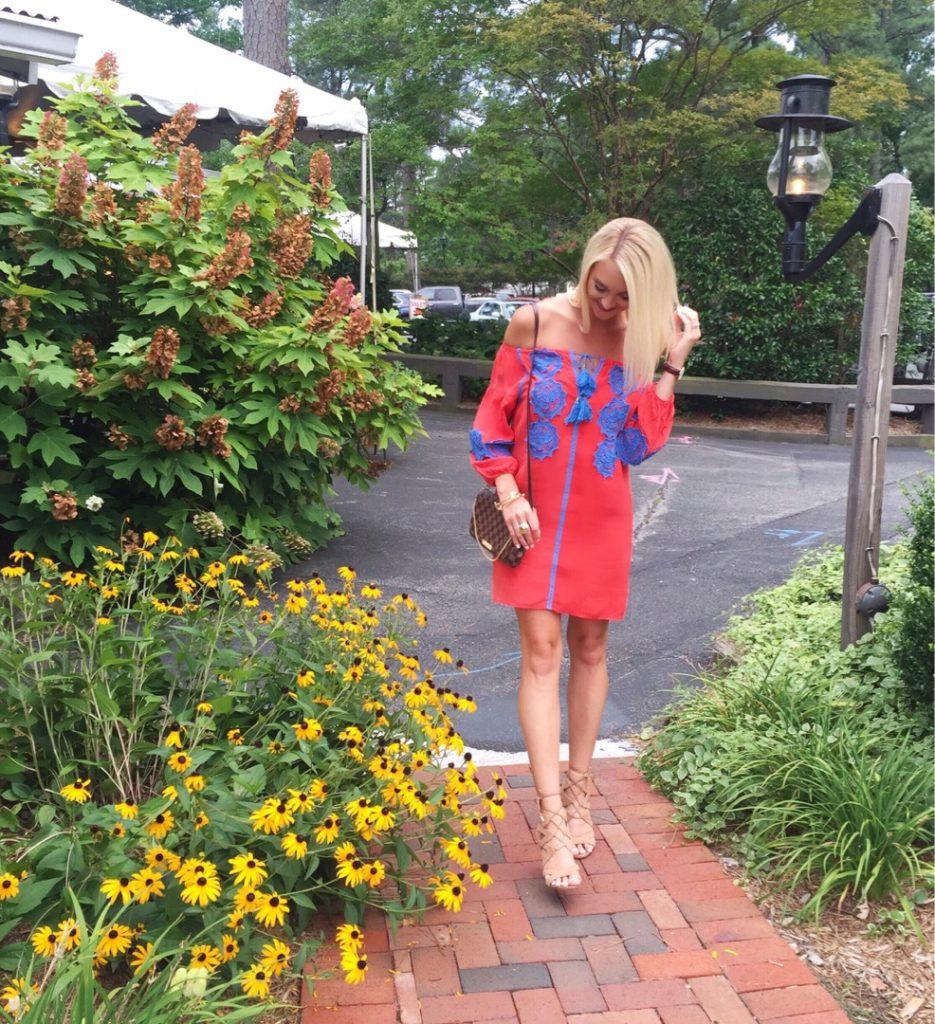 Line & Dot Embellished Dress